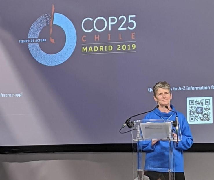 Sarah Sutton speaking at 2019 Council of Parties meeting on the cultural sector and climate and environment