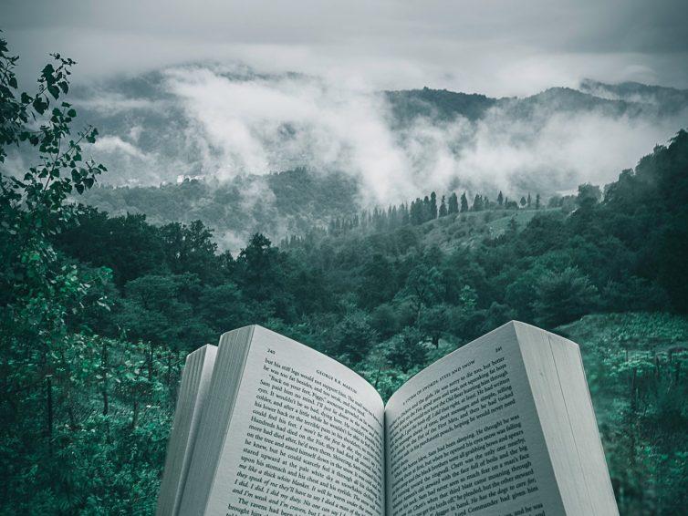 4 clés pour captiver votre lecteur dès les premières pages