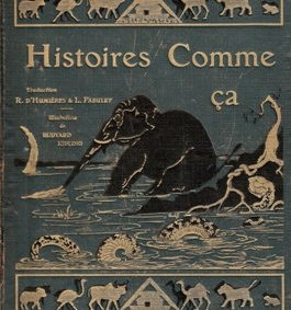 """""""Comment le Rhinocéros acquit sa peau"""" de Rudyard Kipling [podcast]"""