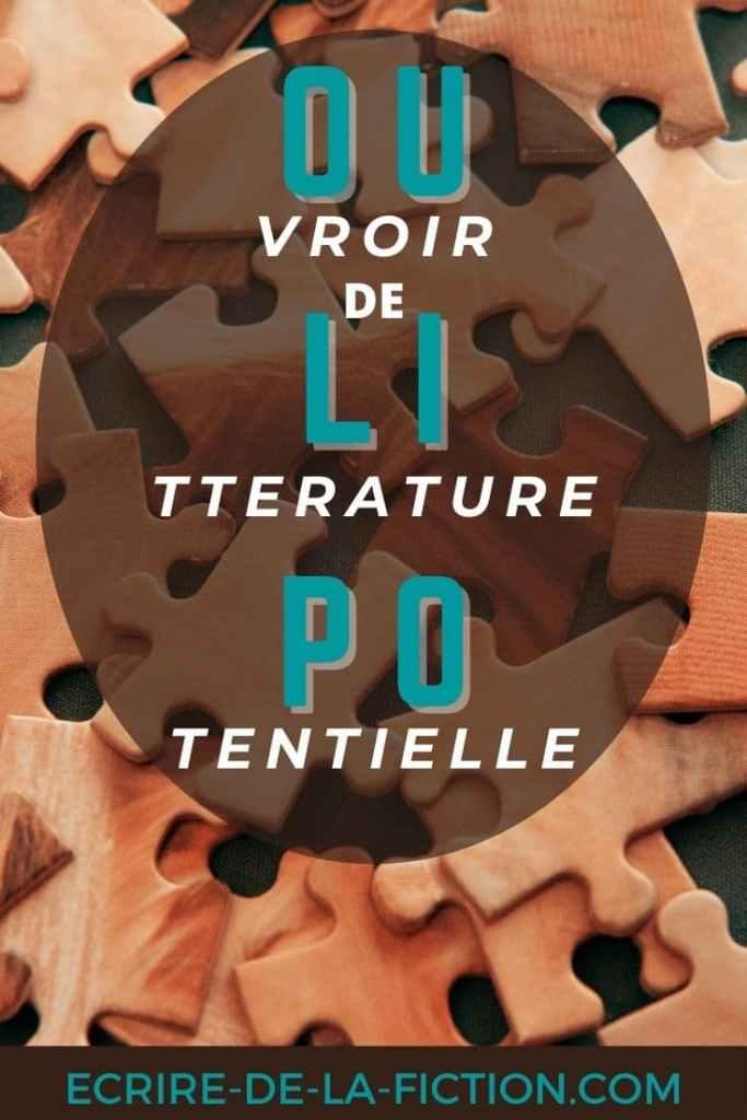 oulipo-puzzle-pinterest