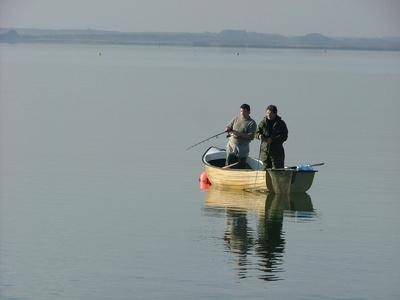 A la pêche à la ligne éditoriale