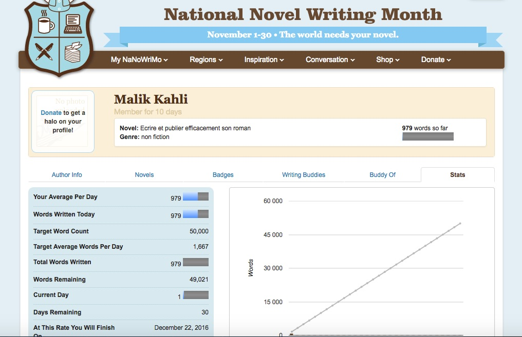 capture-image-nanowrimo-word-count