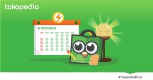 Cara Cek Rekening & Tagihan PLN Setiap Bulan di Rumah