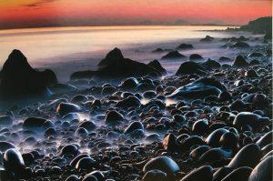 Image of weird bumps on a seashore