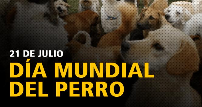día-mundial-del-perro-21-de-julio-ecuador