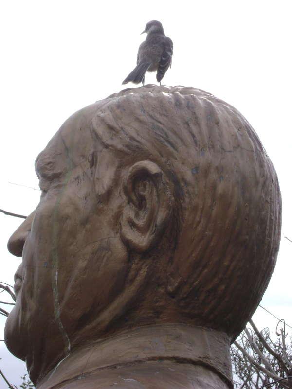 Darwin Finch en un monumento en Puerto Ayora.