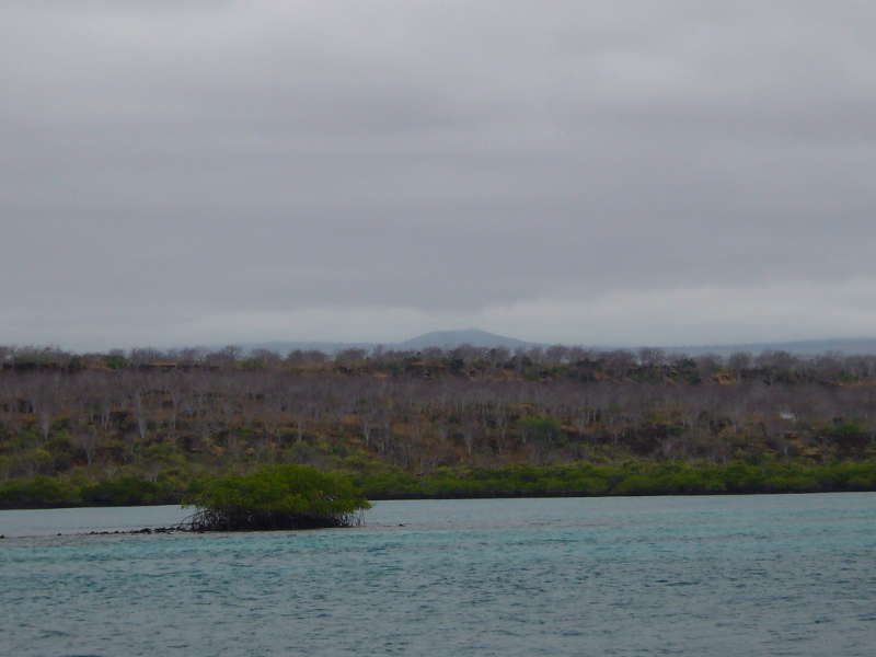 Zona costera y zona árida.