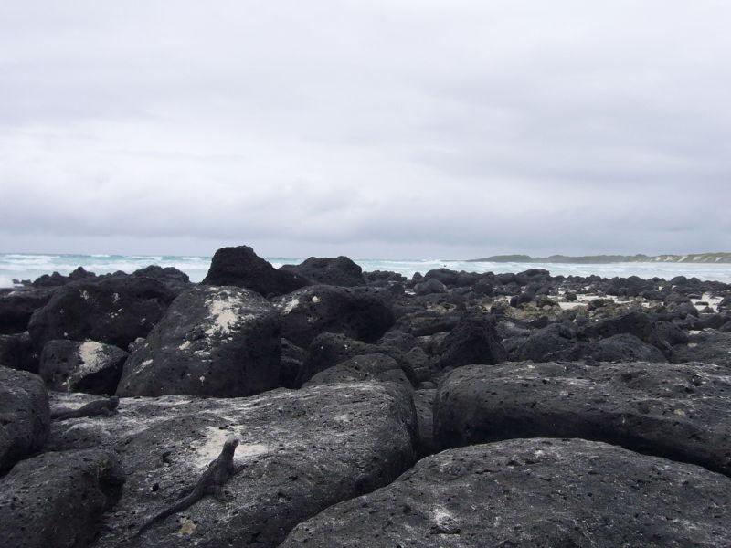Vista a la playa mansa.