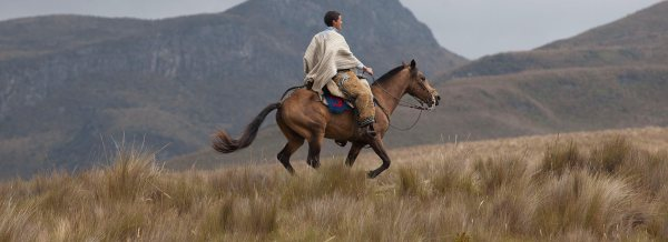 Horse Backriding in the Andes, Ecuador