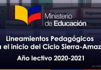 lineamientos-pedagogicos-ciclo-sierra-amazonia-2020-2021-mineduc-ecuador