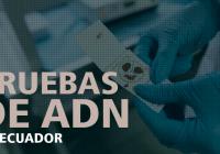 pruebas-de-adn-ecuador-gratis