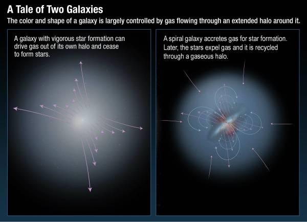 Understanding Galaxy Formation Multiwavelength Astronomy