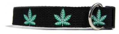 """Fab Dog Pot Weed Leaf Dog Collar Size Medium 1"""" Wide 14""""-18"""""""