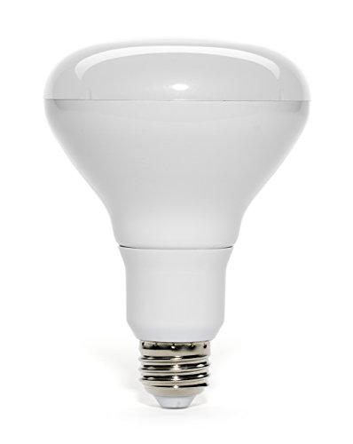 Can Light Bulb Replacement