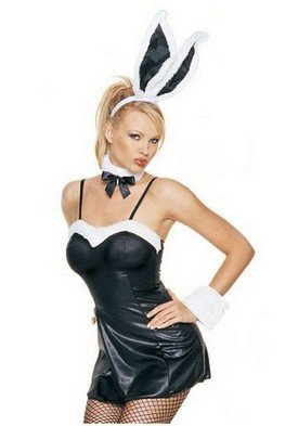 Sexy Plush Trim Halloween Bunny Costume Playboy by Leg avenue