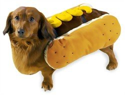 Casual Canine Hot Diggity Dog Mustard Costume