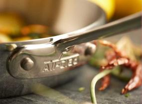 All-Clad Stainless Steel 12-Inch Fry Pan.