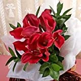 Classic Red Mini Calla Lily Toss Bouquet