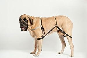 Amazon Jump Stop No Jump Dog Harness Medium M2