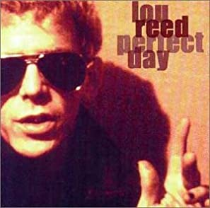 "Cover of ""Perfect Day"""