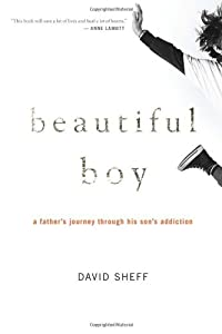 "Cover of ""Beautiful Boy: A Father's Journ..."