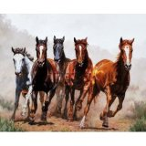 Western Theme Shower Curtain