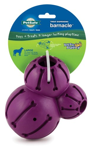 PetSafe Busy Buddy Barnacle Dog Toy, Large