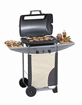 campingaz gas grill expert 2 plus camping gas grill. Black Bedroom Furniture Sets. Home Design Ideas