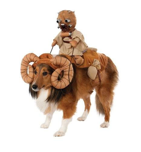 star wars bantha costume pets great for a fawn boxer