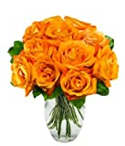 From You Flowers - One Dozen Orange Roses - Exotic! (Free Vase Included)