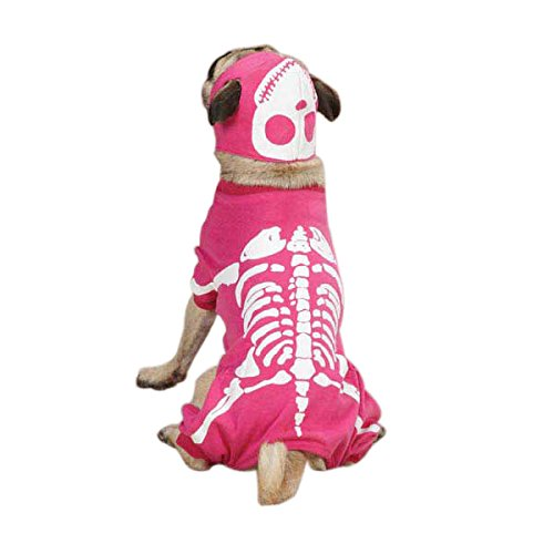 Casual Canine Glow Bones Costume, X-Large