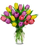 Flowers - Spring Tulip Bouquet - 20 Stems (FREE Vase Included)