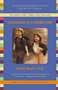 """Cover of """"The Blessing Of A Skinned Knee:..."""