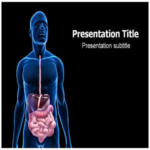Amazon.com: Digestive System Powerpoint Template ...