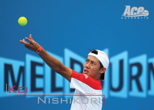 ACE AUTHENTIC 日本限定版 錦織圭 テニスカードセット ROAD TO TOP 10(1セット31枚入り)