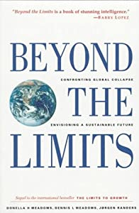 "Cover of ""Beyond the Limits: Confronting ..."