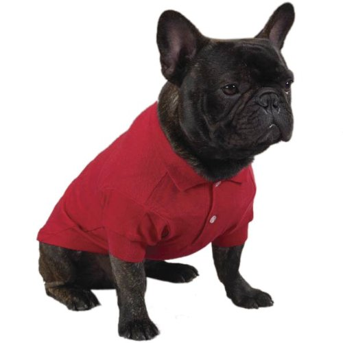 Zack & Zoey Cotton Polo Dog Shirt, Small, 12-Inch, Tomato Red