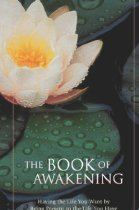 Soul Reads The Book of Awakening