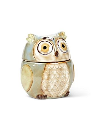http://kitchenthings.hershoppingcircles.com/6-stoneware-turquoise-owl-kitchen-food-storage-canister/