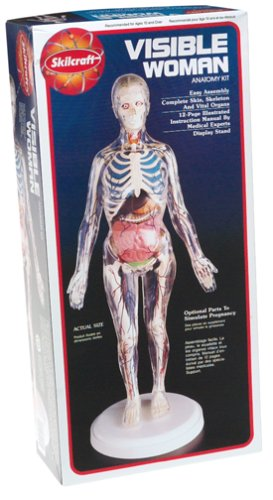 Anatomy Jane and Other Anatomy Models