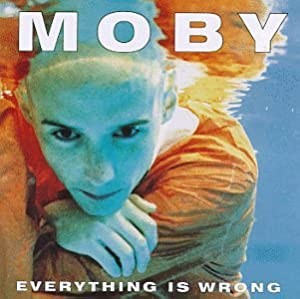 "Cover of ""Everything Is Wrong"""
