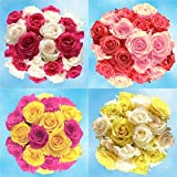 Mother's Day Flowers |50 Assorted Roses - Just Dazzling