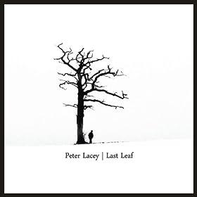 PETER LACEY Last Leaf