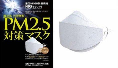 特許構造 東レ不織布を使用 N95 pm2.5対策マスク×10枚セット