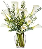 From You Flowers - Sympathy Calla Lilies - Deluxe (Free Vase Included)