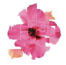 Capa do álbum Orchestral Variations V.01, por The Separate