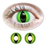 Grüne/Gelbe Motivlinsen BIONORA Farbige Kontaktlinsen Katzenaugen Jahreslinsen inklusive Behälter