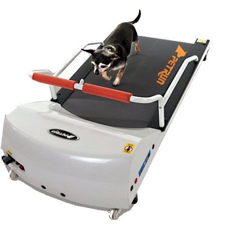 Dog Treadmill Indoor Exercise / Fitness Kit