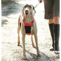 "Easy Training Dog Harness Medium Black Girth 20""-28"""