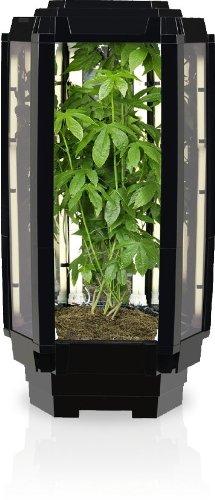 Hydroponic Grow Box Amazon